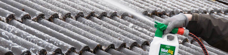 Norrväggen på huset eller planket i skugga kan snabbt börja skifta i grönt när alger och mossa får fäste och effektivt och snabbt breder ut sig. Lösningen heter MotAlg - ett effektivt och långtidsverkande rengöringsmedel för de flesta material; takpannor, markiser, trä- och plastmöbler.