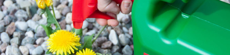Det är hög tid att börja bekämpa ogräset nu, när tillväxten kommit igång på allvar. Ogräs Effekt från Neudorff är ett biologiskt ogräsmedel baserat på naturliga fettsyror med pelargonsyra, en effektiv fettsyra för ogräsbekämpning. Ämnet bryts ner helt i jorden och lämnar inga restämnen som påverkar miljön eller annan växtlighet.